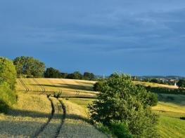 Къде земеделската земя у нас е най-евтина и най-скъпа
